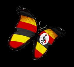 butterfly_uganda_250px